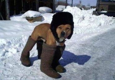Meteorologowie zapowiadają srogą zimę